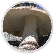 Large Mushroom Round Beach Towel
