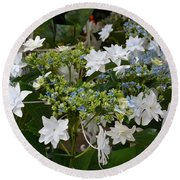 Round Beach Towel featuring the photograph Shooting Star Bouquet by Jeannie Rhode