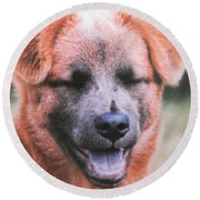 Laughing Dog Round Beach Towel by Belinda Lee