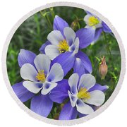 Round Beach Towel featuring the digital art Lavender And White Star Flowers by Mae Wertz