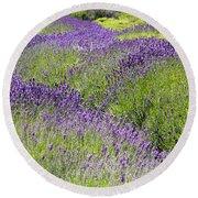 Lavender Day Round Beach Towel by Kathy Bassett