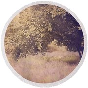 Lavender Dreams Round Beach Towel by Amy Weiss