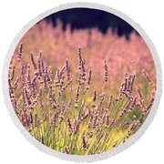 Round Beach Towel featuring the photograph Lavender Dreams by Lynn Sprowl