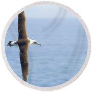 Laysan Albatross No 1 - Kilauea - Kauai - Hawaii Round Beach Towel
