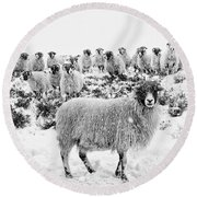 Leader Of The Flock Round Beach Towel by Janet Burdon