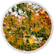 Leaf Breezes Round Beach Towel by Deborah  Crew-Johnson
