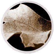 Round Beach Towel featuring the photograph Leaf Collage 1 by Lauren Radke