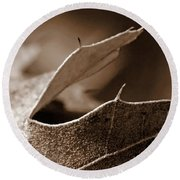 Round Beach Towel featuring the photograph Leaf Collage 2 by Lauren Radke