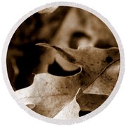 Round Beach Towel featuring the photograph Leaf Collage 4 by Lauren Radke