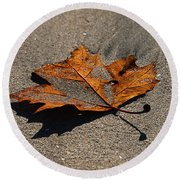 Round Beach Towel featuring the photograph Leaf Composed by Joe Schofield