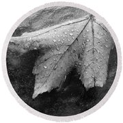 Leaf On Glass Round Beach Towel