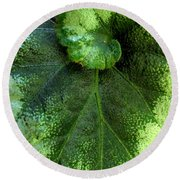 Leafy Greens Round Beach Towel
