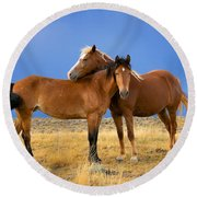 Lean On Me Wild Mustang Round Beach Towel