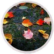 Leaves On Rock  Round Beach Towel