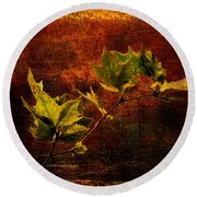 Leaves On Texture Round Beach Towel