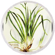Lemon Daylily Botanical Round Beach Towel
