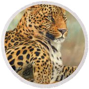 Leopard Round Beach Towel