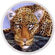 Leopard In A Tree Round Beach Towel