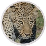 Leopard Stalking Round Beach Towel