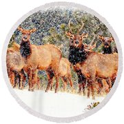 Let It Snow - Barbara Chichester Round Beach Towel