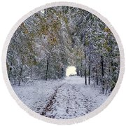 Round Beach Towel featuring the photograph Let It Snow by Felicia Tica