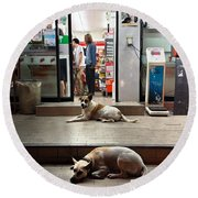Round Beach Towel featuring the photograph Let Sleeping Dogs Lie Where They May by Mr Photojimsf