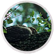 Let Sleeping Hawks Lie Round Beach Towel