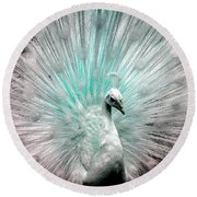 Leucistic White Peacock Round Beach Towel
