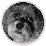 Lhasa Puppy Cut Round Beach Towel