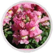 Light Pink And Yellow Sweet Peas Round Beach Towel