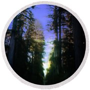Round Beach Towel featuring the digital art Light Through The Forest by Cathy Anderson