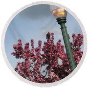 Round Beach Towel featuring the photograph Lighting Up The Day by Michael Krek