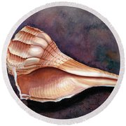 Lightning Whelk Round Beach Towel by Barbara Jewell
