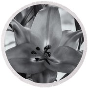 Lily 16 Round Beach Towel