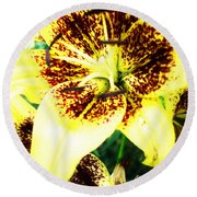 Round Beach Towel featuring the photograph Lily Love by Shana Rowe Jackson