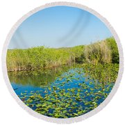 Lily Pads In The Lake, Anhinga Trail Round Beach Towel