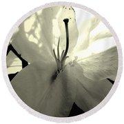 Lily White Round Beach Towel