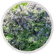 Lincoln Park In Bloom Round Beach Towel