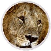 Lion 01 Round Beach Towel by Wally Hampton