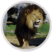 Lion 2 Round Beach Towel