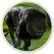 Lion 4 Round Beach Towel