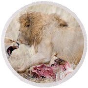 Lion And A Lioness Panthera Leo Round Beach Towel