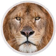 Lion Close Up Round Beach Towel by Jerry Fornarotto