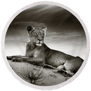 Lioness On Desert Dune Round Beach Towel