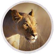Lioness Portrait-1 Round Beach Towel
