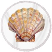 Lion's Paw Shell Round Beach Towel