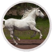 Lipizzan At Liberty Round Beach Towel by Wes and Dotty Weber
