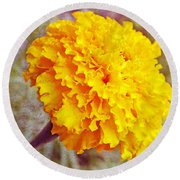 Round Beach Towel featuring the photograph Little Golden  Marigold by Kay Novy
