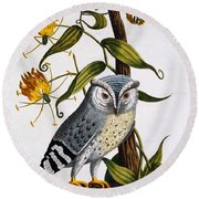 Little Horned Owl, From Indian Zoology Round Beach Towel