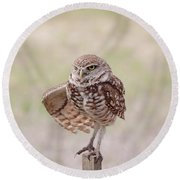 Round Beach Towel featuring the photograph Little One by Kim Hojnacki